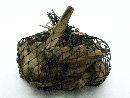 Schwemmholz-Teile / Driftwood NATUR 80159 1kg / Beutel