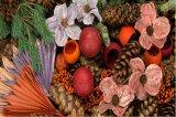 Exoten / Trockenblumen